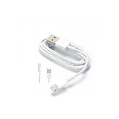 Apple iPhone Lightning USB laidas